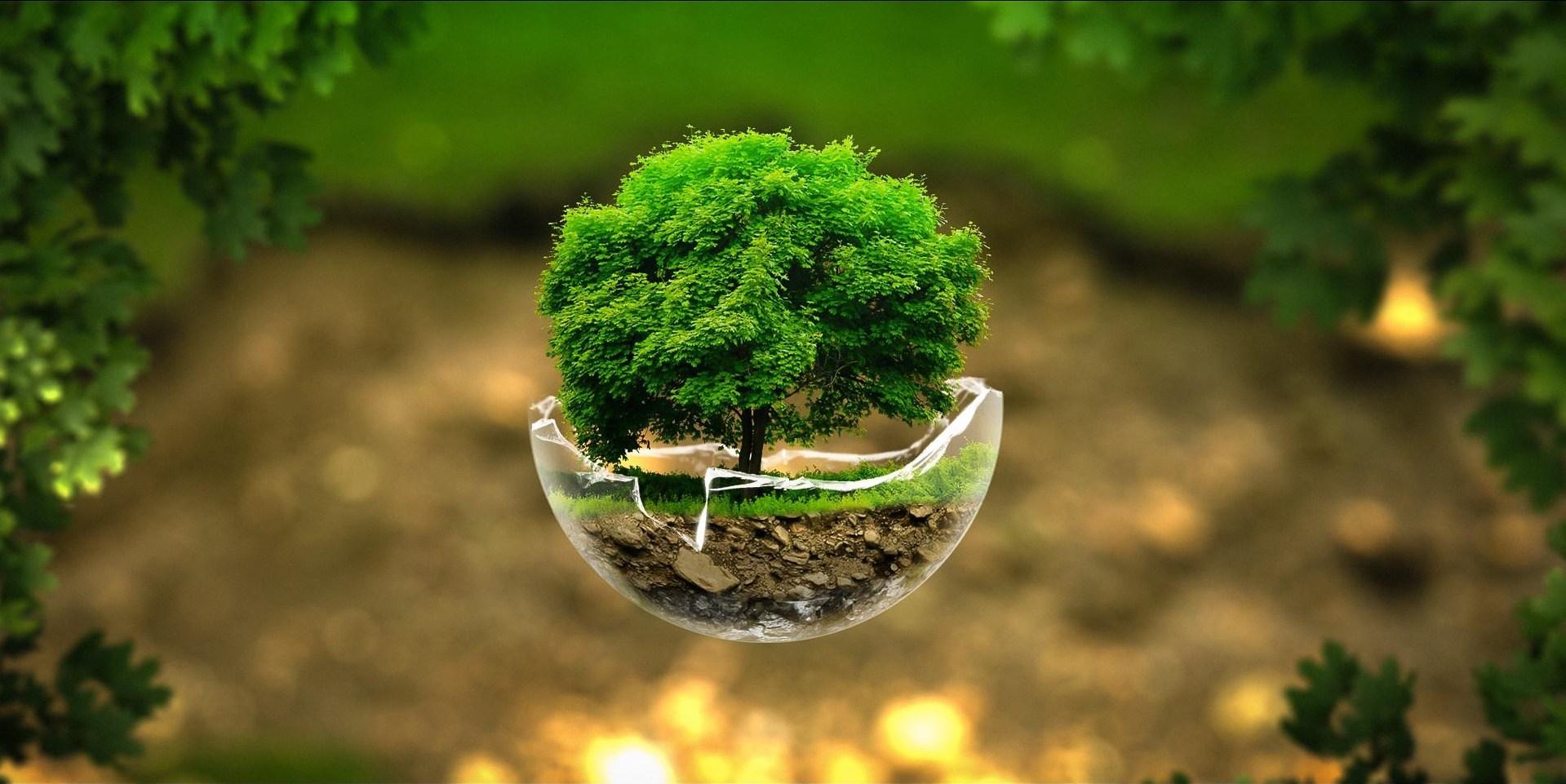 WORLD ENVIRONMENT DAY – BEAT PLASTIC POLLUTION